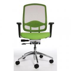 Bürodrehstuhl MATTEGO inkl. Armlehnen Grün/Grün | Nein
